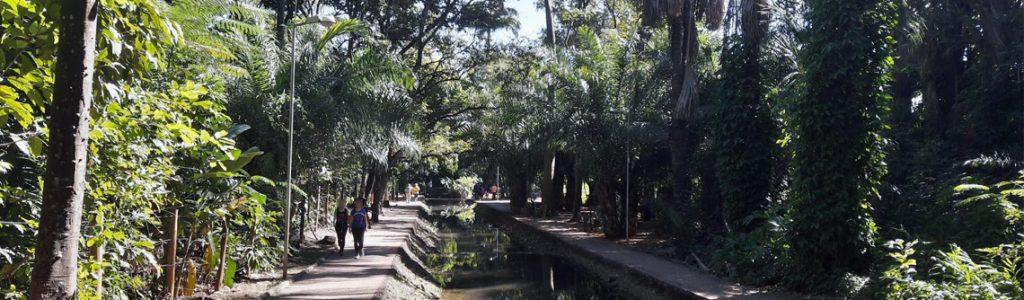programas imperdíveis para fazer em Goiânia bosque dos buritis